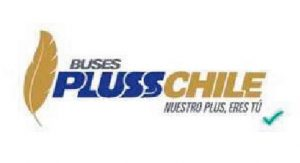 buses pluss chile